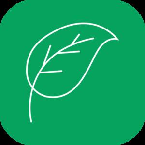 Kurinji Naturals Logo